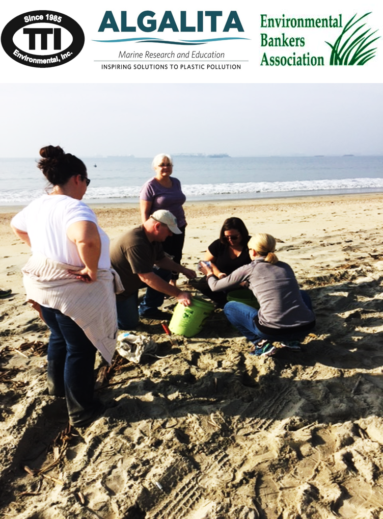 Tim Popp, TTI's VP of Environmental Consulting, and other volunteers sifting sand for plastics.