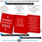 Prepare for Business Environmental Risks (BERs)
